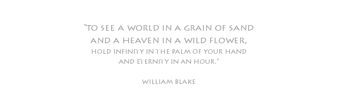 """to see a world in a grain of sand and a heaven in a wild flower, hold infinity in the palm of your hand and eternity in an hour."" william blake"